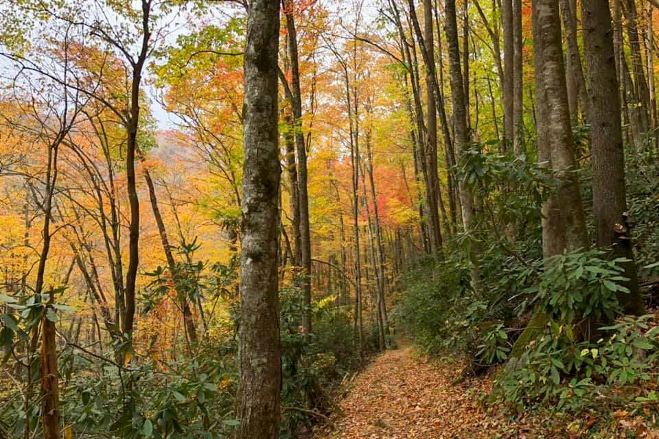 Fall is a great time for a hike
