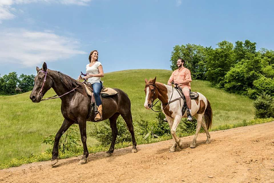 Do you love to ride horses?