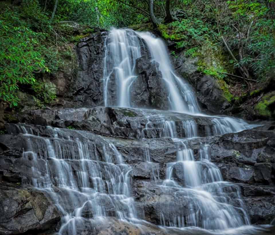 Hike to Laurel Falls in the Smoky Mountains
