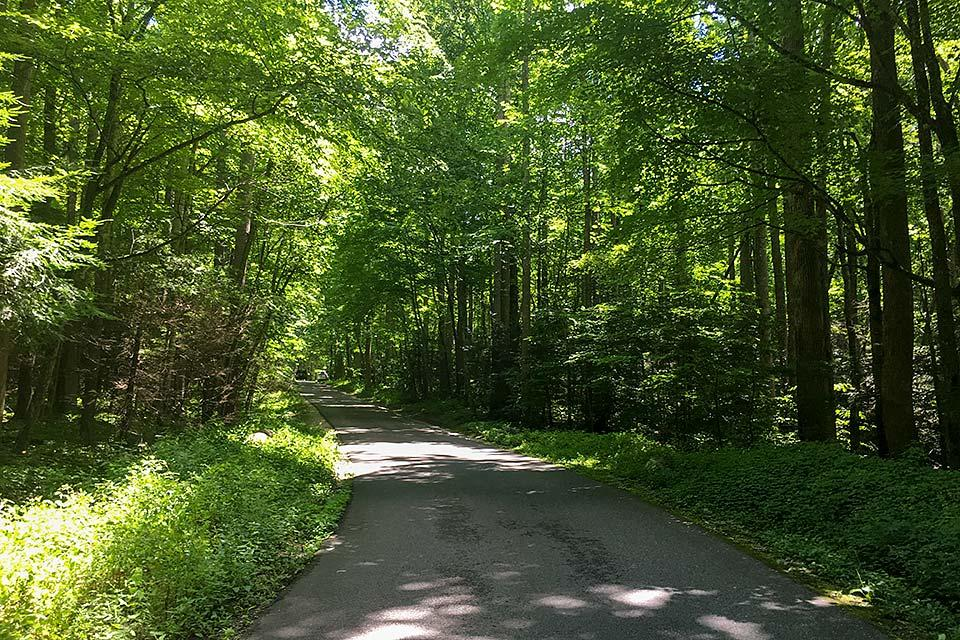 Motor nature trail in the Smoky Mountains