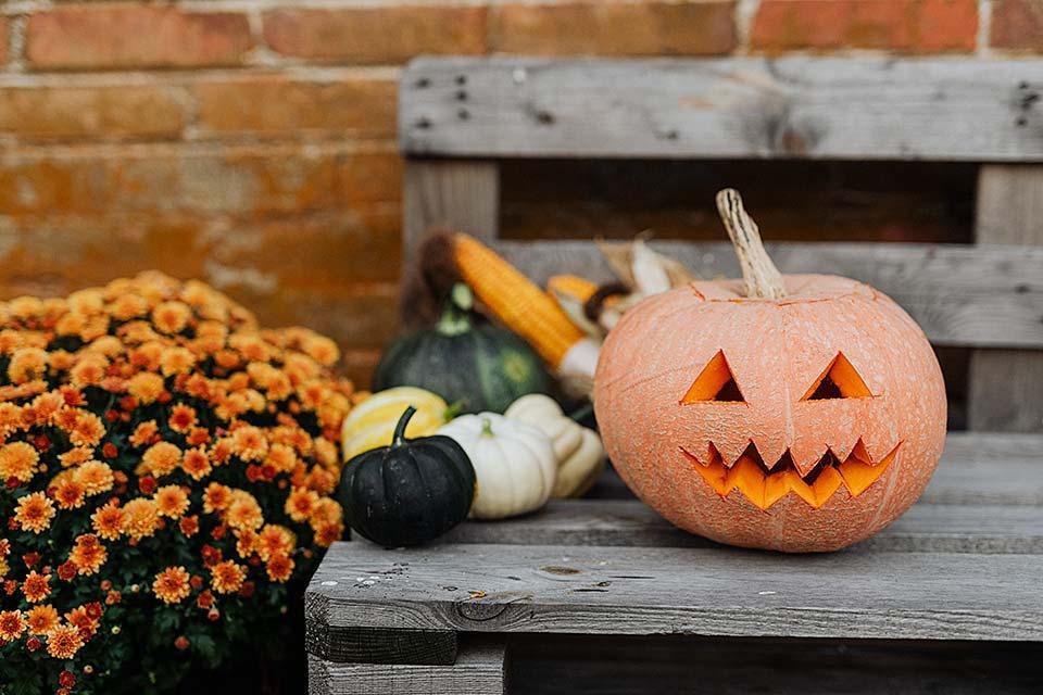 Halloween in the Smokies